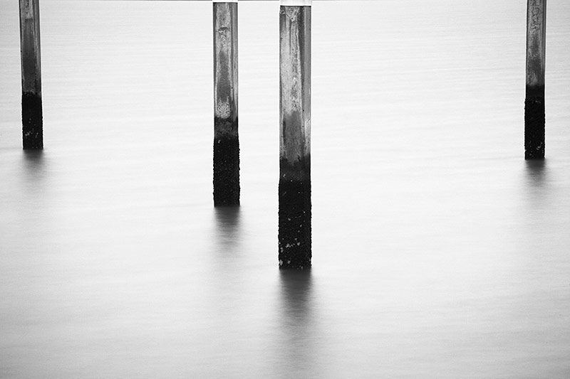 Abandoned Dock Pilings Black and White Photos